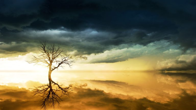 Lugnet i stormen
